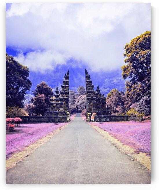 Bali   Infrared   Purple by ASAR STUDIOS