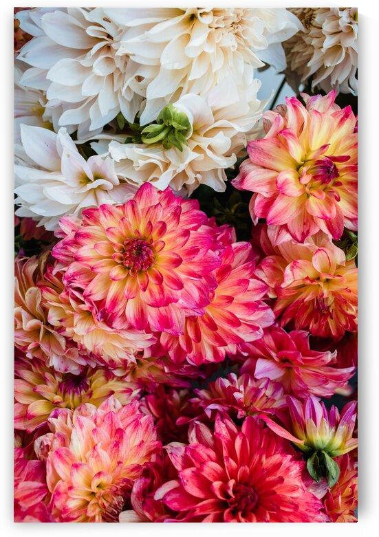 FlowerBunches by Lynnette Brink