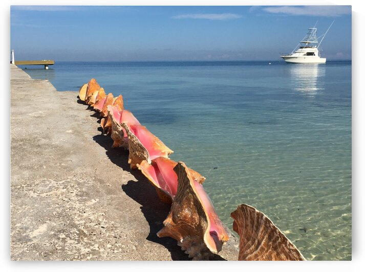 Jamaica - Montego Bay by Lynn Prudhomme Mills