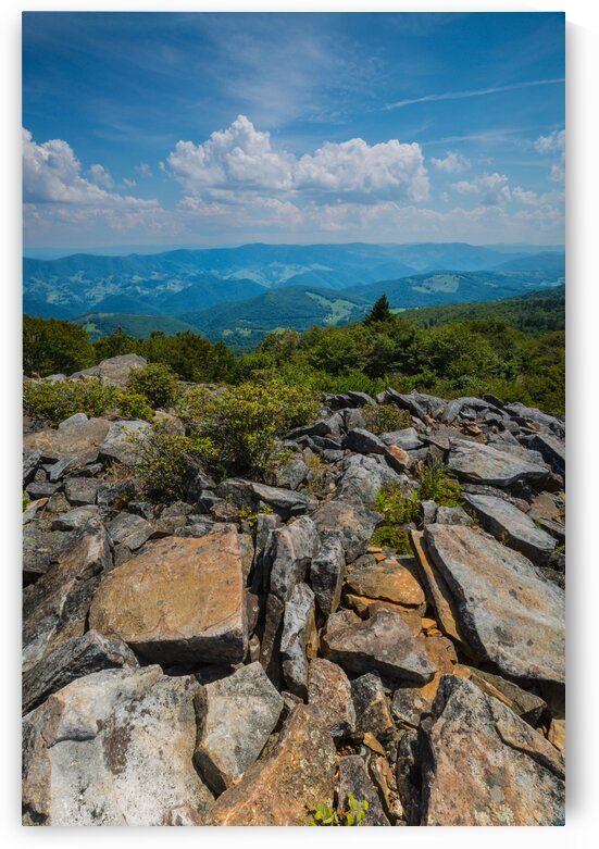 Spruce Knob ap 2397 by Artistic Photography