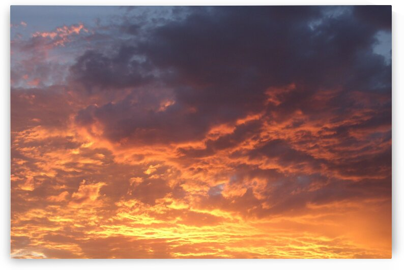 Sunsets Golden Fire  by Sherrie Larch