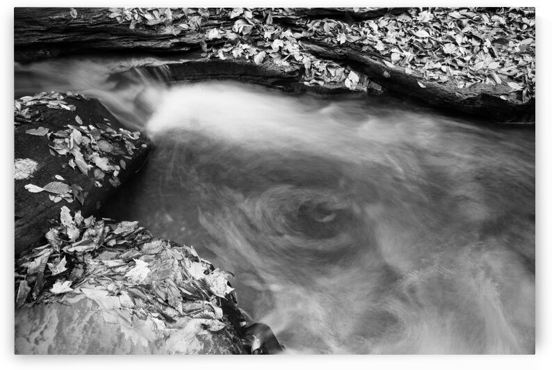 Roaring Run ap 1961 B&W by Artistic Photography