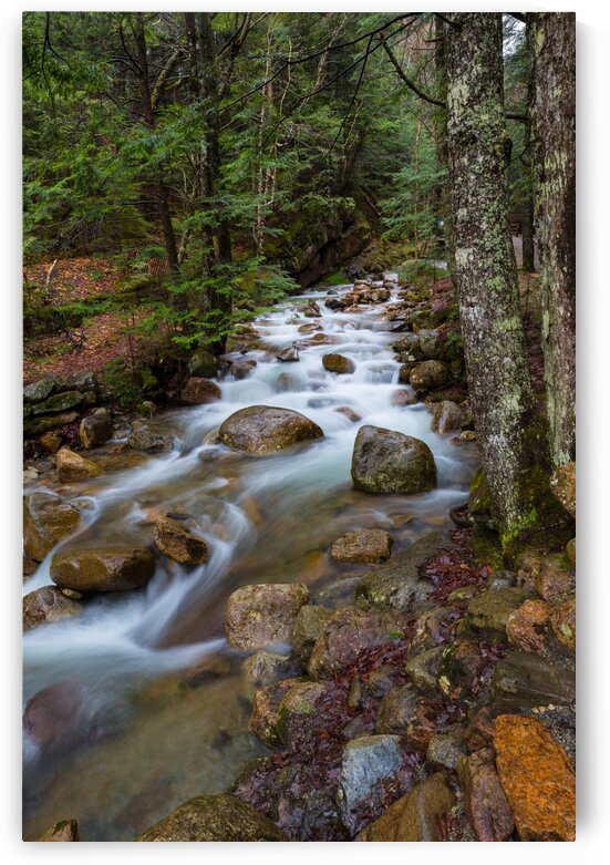 The Flume Brook ap 2200 by Artistic Photography