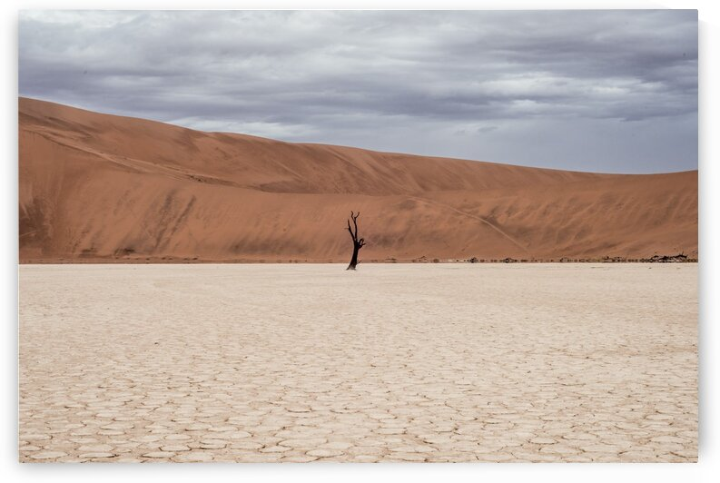 Desert scape Namibia by Lynnette Brink