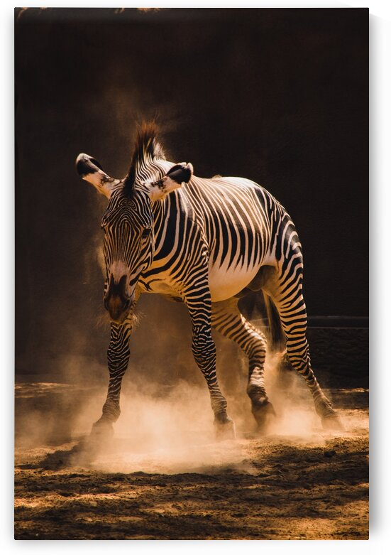 Kicking Up Dust by Lynnette Brink