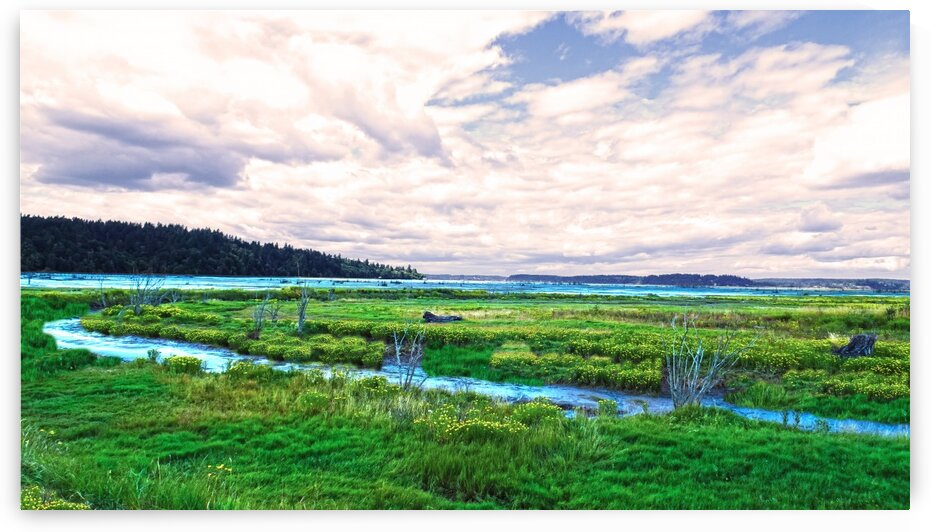 The Estuary in Fall by 1North