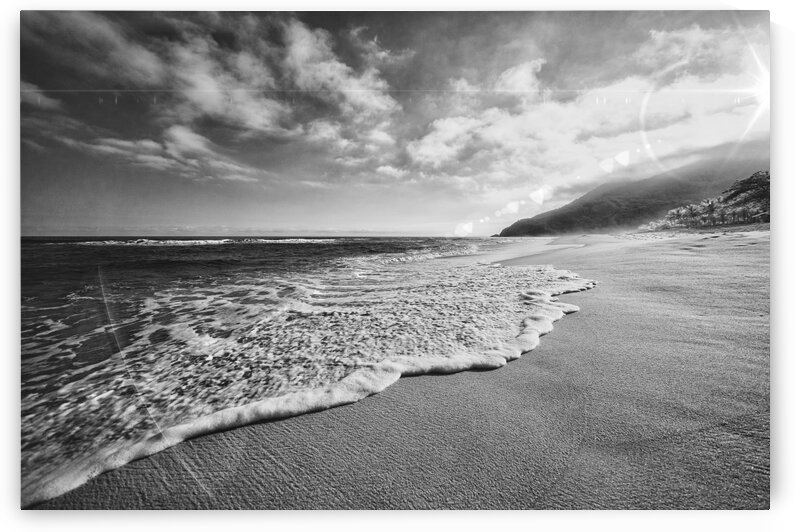 Sympathy of Existence bw by Glauco Meneghelli