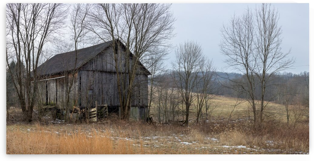 Classic Barn apmi 1557 by Artistic Photography