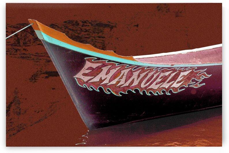 Boat - XCIV by Carlos Wood