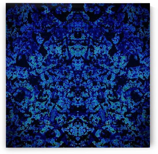GRAND MASTER blue by Tim Glasby