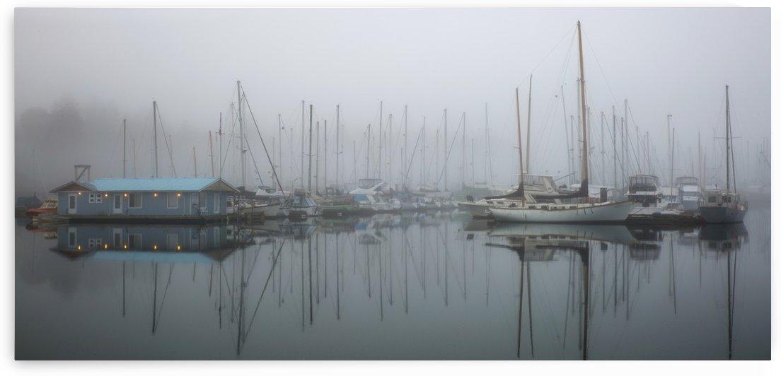 In A Fog by Randy Hall by Randy Hall