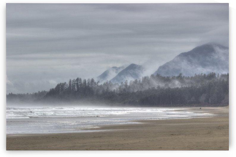 West Coast Mist by Randy Hall by Randy Hall