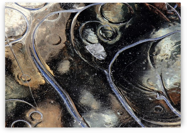 Icy Bubbles by Randy Hall by Randy Hall