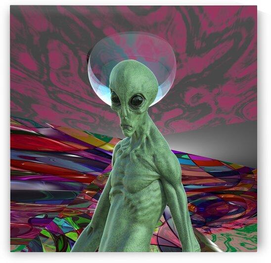 Alien Sunrise by Matthew Lacey