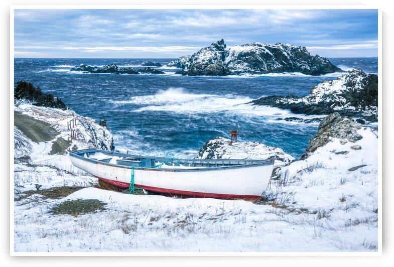 Sleepy Cove by David Brophy
