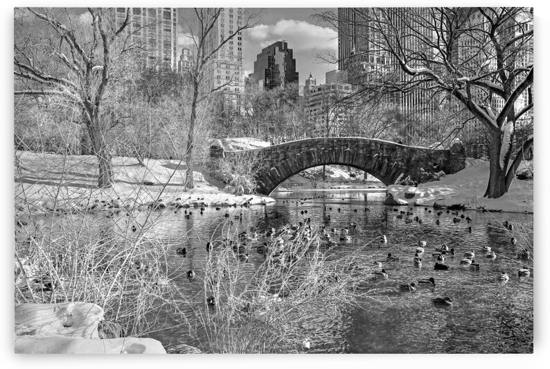 New York bw60  by Denis Brien