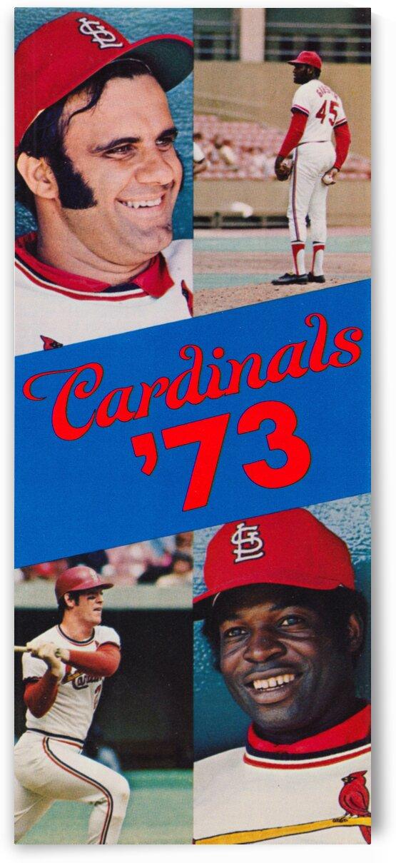 1973 St. Louis Cardinals Baseball Art by Row One Brand