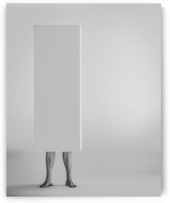 Life In A Box 3 by Bob Orsillo
