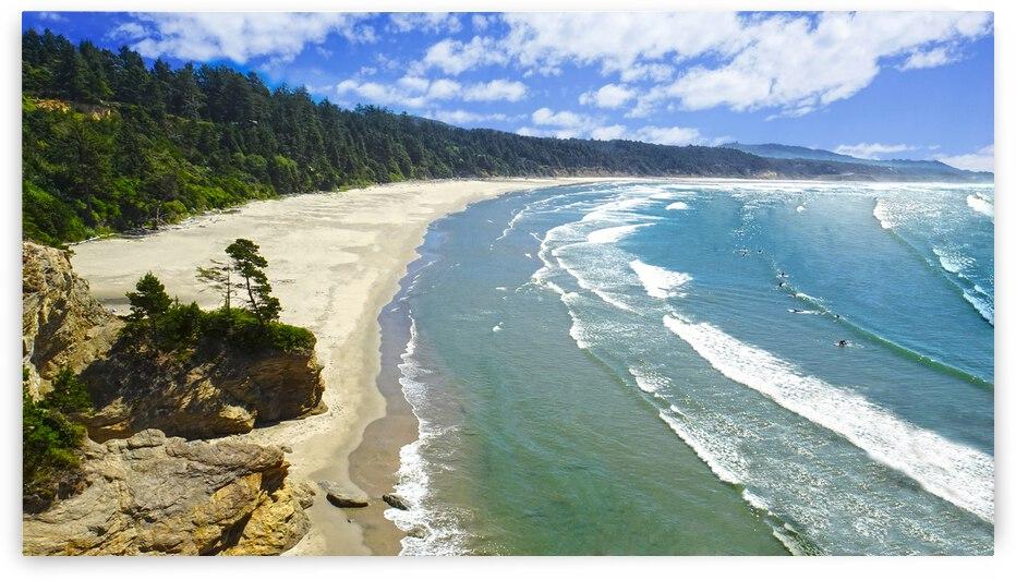 Wild Oregon Coast by 360 Studios