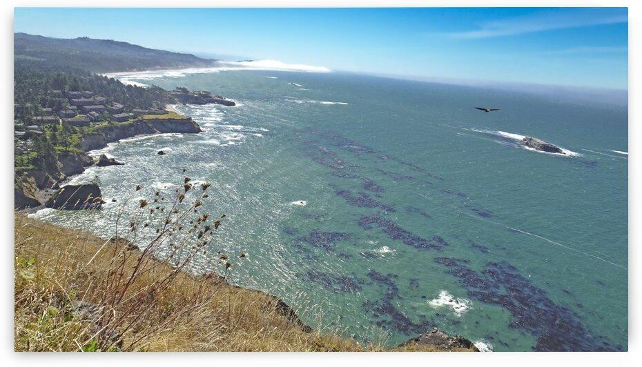 Turqouise Seas along the Oregon Coast by 24
