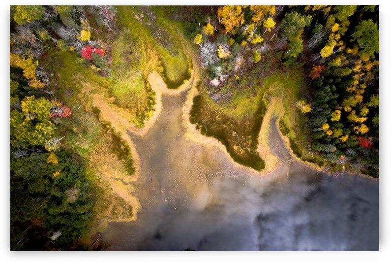 Velour dautomne-Autumn velvet by Jean Gaboury