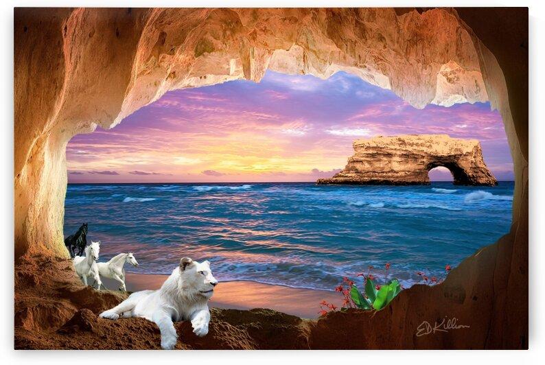 CAVE BEACH by E D Killion