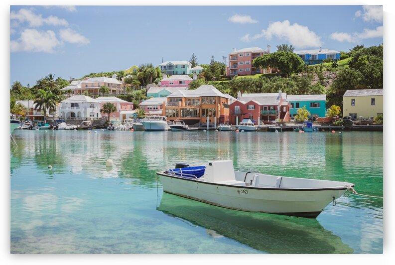 Bermuda by Michael Ozimko
