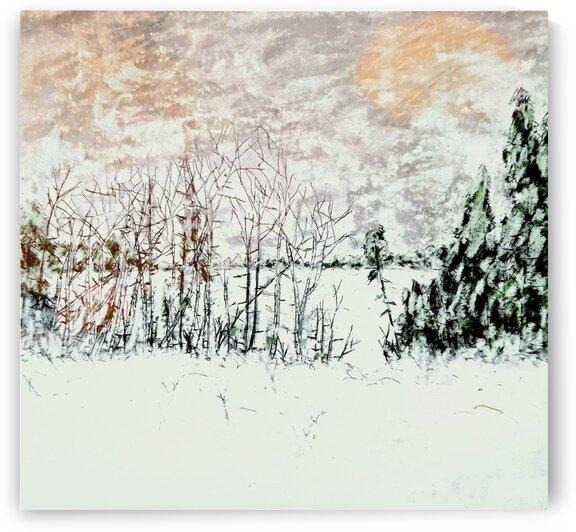 Winter Lake by djjf
