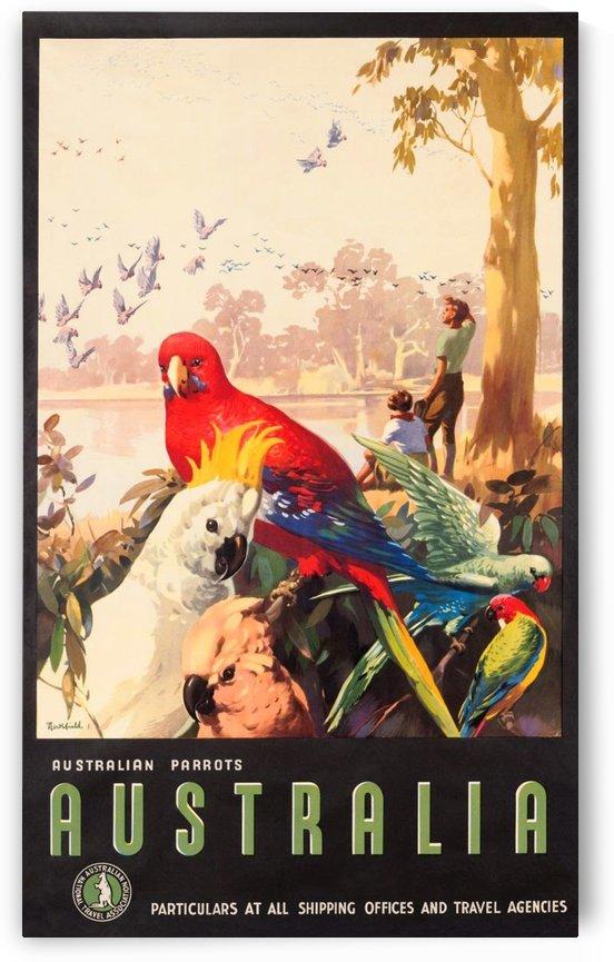 Australia Parrots by VINTAGE POSTER