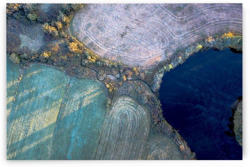 Gelee blanche-Hoar frost I by Jean Gaboury