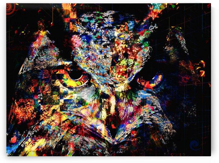Owl by Jean-Francois Dupuis