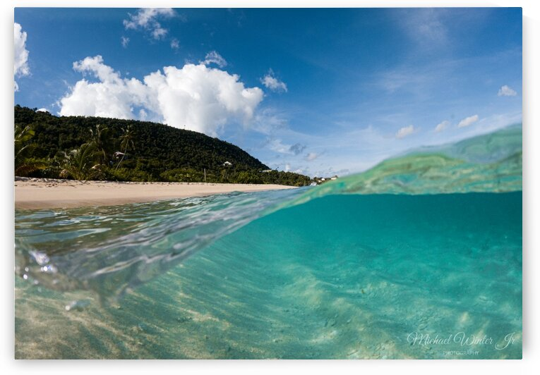 Under di Sea3 by Michael Winter Jr Photography
