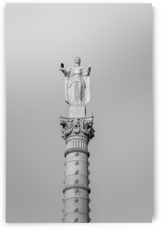 Vulture on the Victory Monument by msnell photo