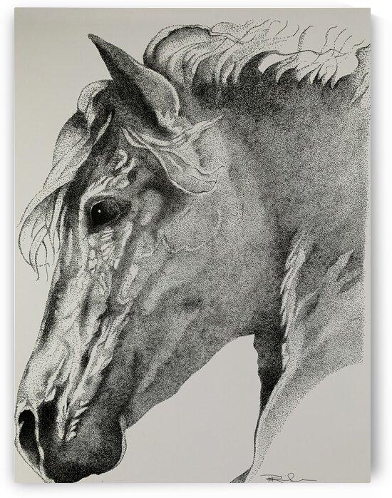 Horse head by Patricia Kieneker