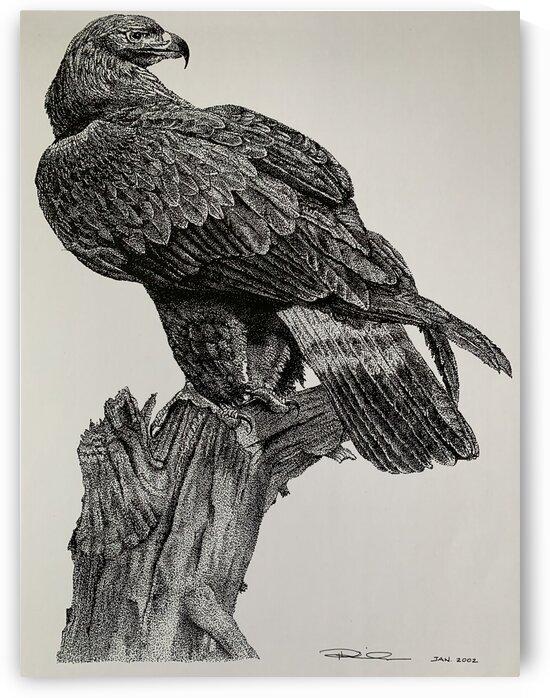 Eagle by Patricia Kieneker