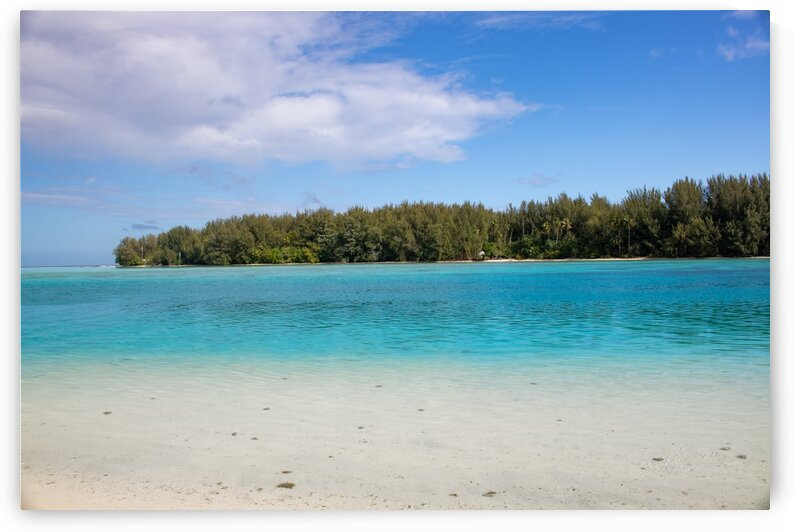 Moorea - turquoise water and white sand beach by Samantha Hemery