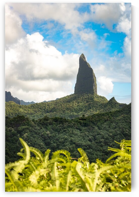 Moorea - Moua Roa from a different perspective by Samantha Hemery