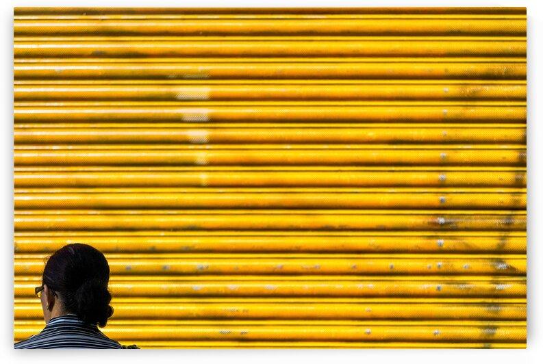 Deep Yellow Sun by Glauco Meneghelli