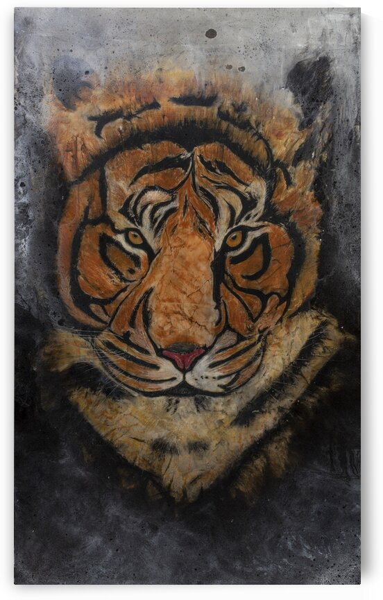 FineArtCopy Tiger f by Jake and Shae Nelson