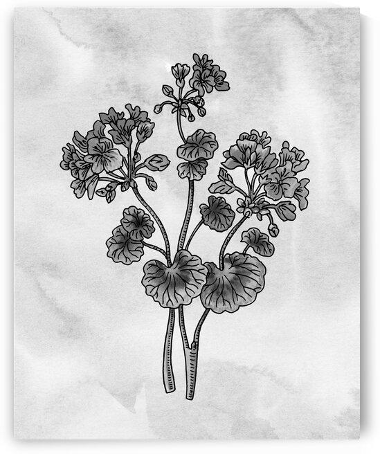 Geranium Simple Gray Botanical Flower On Watercolor Marble  by Irina Sztukowski