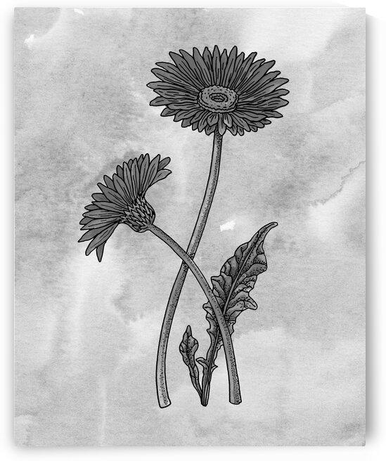Gerbera Simple Gray Botanical Flower On Watercolor Marble  by Irina Sztukowski