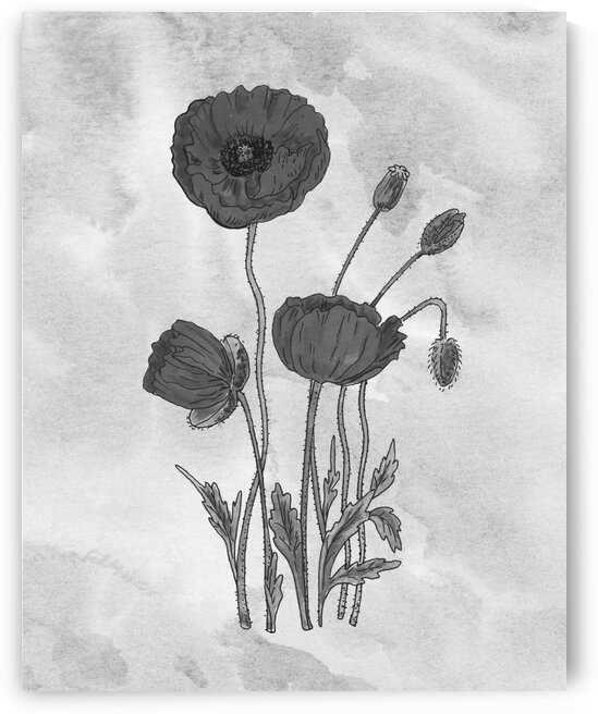 Poppies Simple Gray Botanical Flower On Watercolor Marble  by Irina Sztukowski