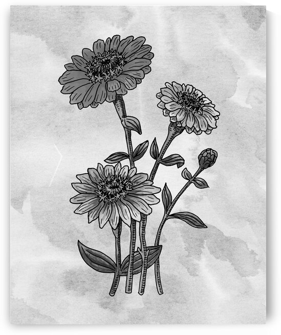 Zinnia Daisies Simple Gray Botanical Flower On Watercolor Marble  by Irina Sztukowski