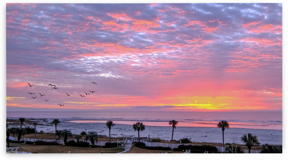 Pink and Yellow Sunrise at Beach by Darryl Brooks