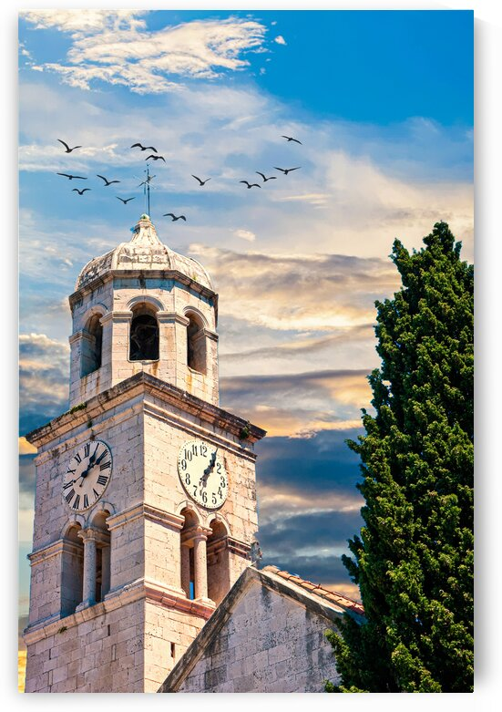 Old Clock Tower by Tree by Darryl Brooks