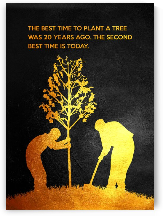 The best time to plant a tree was 20 years ago. The second best time is now. Chinese Proverb Motivational Wall Art by ABConcepts