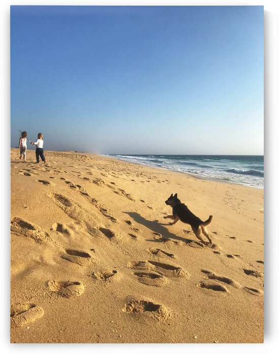 Dog and kids on the beach in Portugal by Anita Varga
