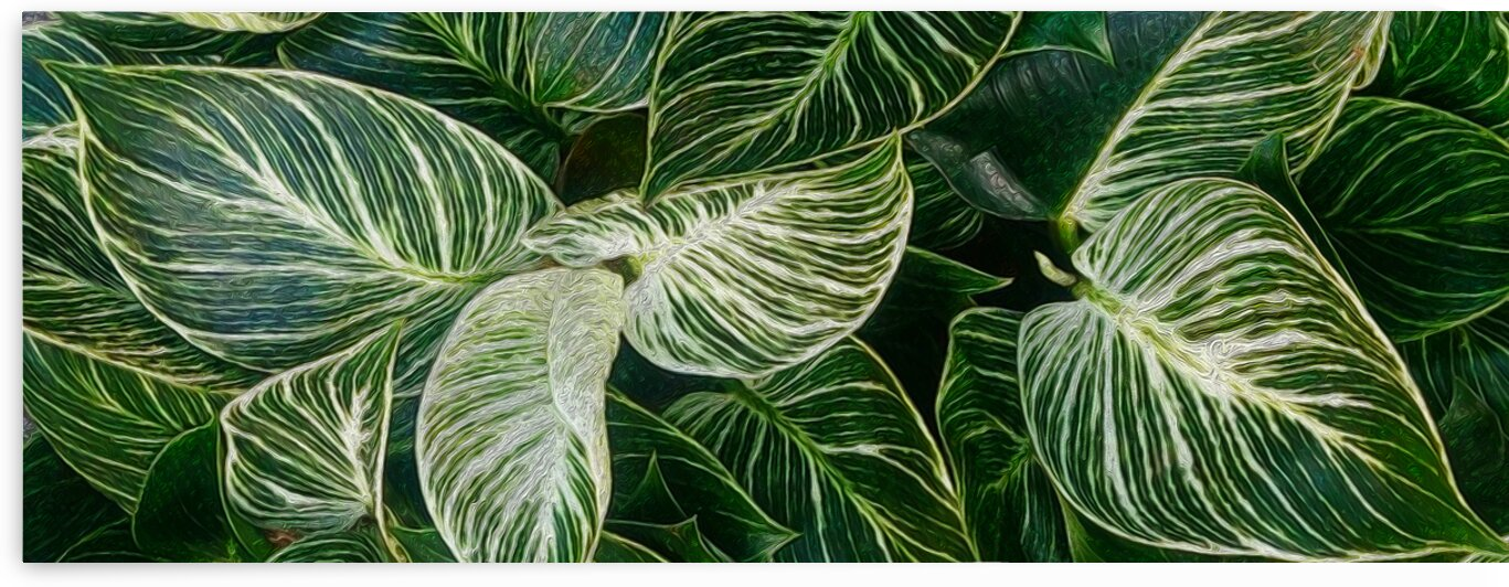Horizontal background from green leaves.  by Ievgeniia Bidiuk