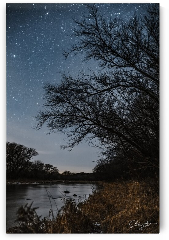 Starlit by Alex Beemer