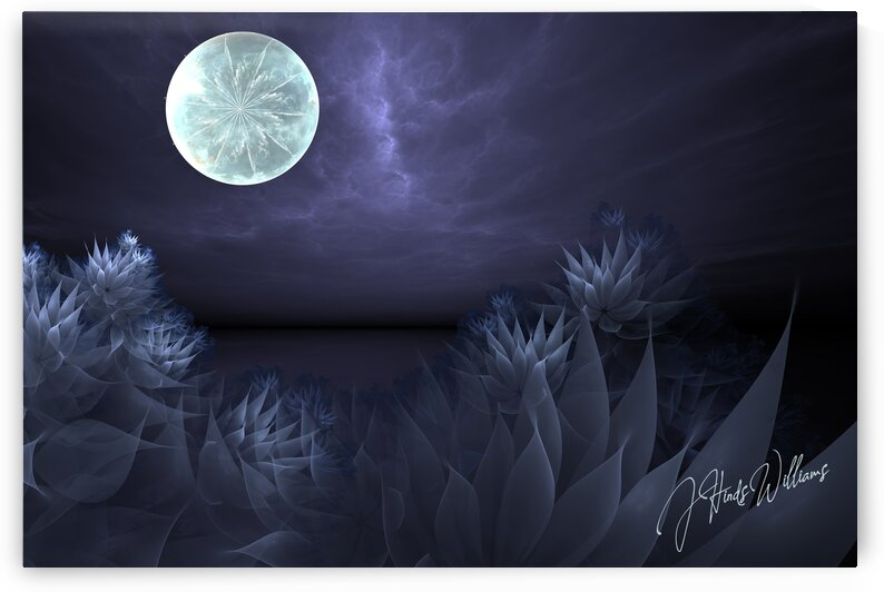 Beneath a Flower Moon by Derbyshire Hearts